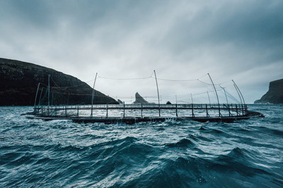 For decades Hiddenfjord has moved its farming activities to more exposed locations with stronger currents and higher waves, where salmon is raised in pens placed in exposed locations to obtain the best living conditions for the salmon.